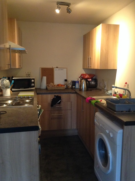 1/1 15 Bannatyne Avenue, Dennistoun Kitchen