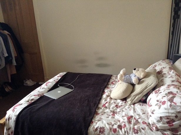 1/1 15 Bannatyne Avenue, Dennistoun Bedroom 2